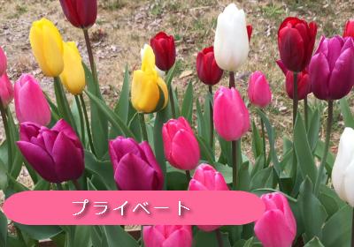 町田,相模原の個人サロンセラピストのプライベート